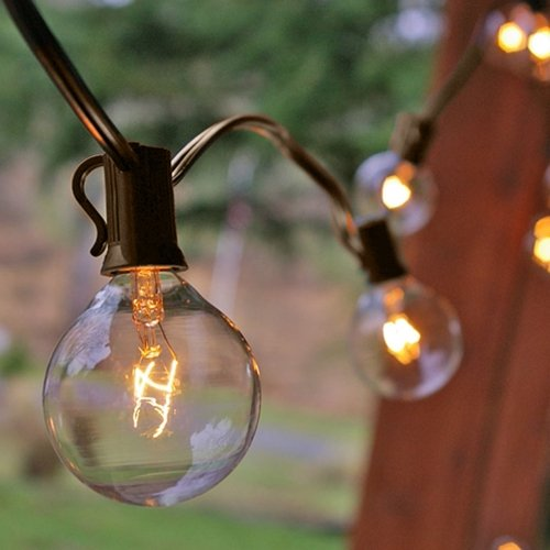 String Garden Lights Indoor Outdoor : 25 Ft Clear Globe G40 String Lights Set with 25 G40 Bulbs Included, End-to-end UL Listed ...
