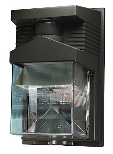 heath zenith hz 5630 bz 180 degree halogen motion sensing security. Black Bedroom Furniture Sets. Home Design Ideas