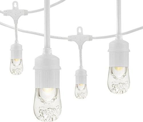Enbrighten Outdoor String Lights: Enbrighten Café LED String Lights, White, 48-Foot, 24